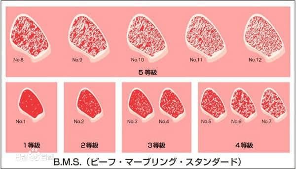 เกรดของเนื้อวัวญี่ปุ่น